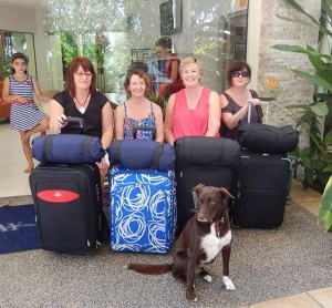 The Go Pillow was great for our stay in Port Douglas